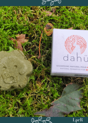 Shampoing solide pour chien Dahü de Druydès